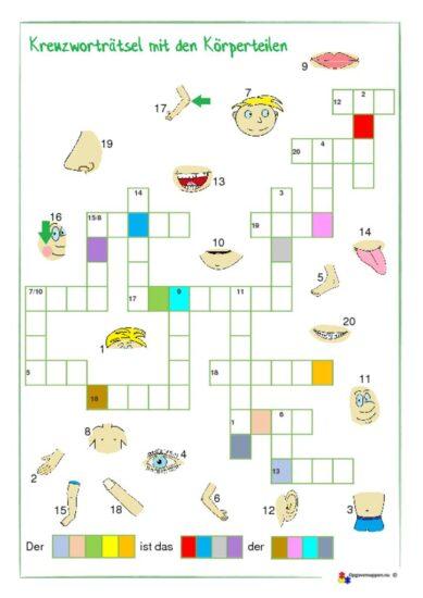 thumbnail of Kreuzworträtsel – Körperteile – der Körper – opgavemappen.nu